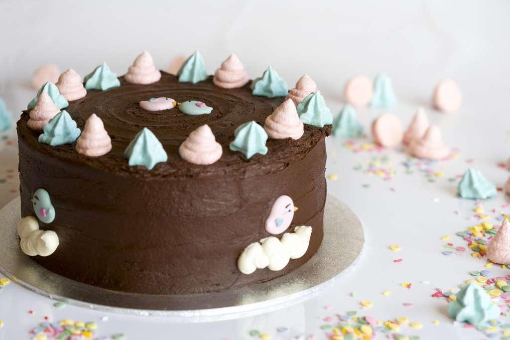 Tarta de chocolate y frambuesa 2