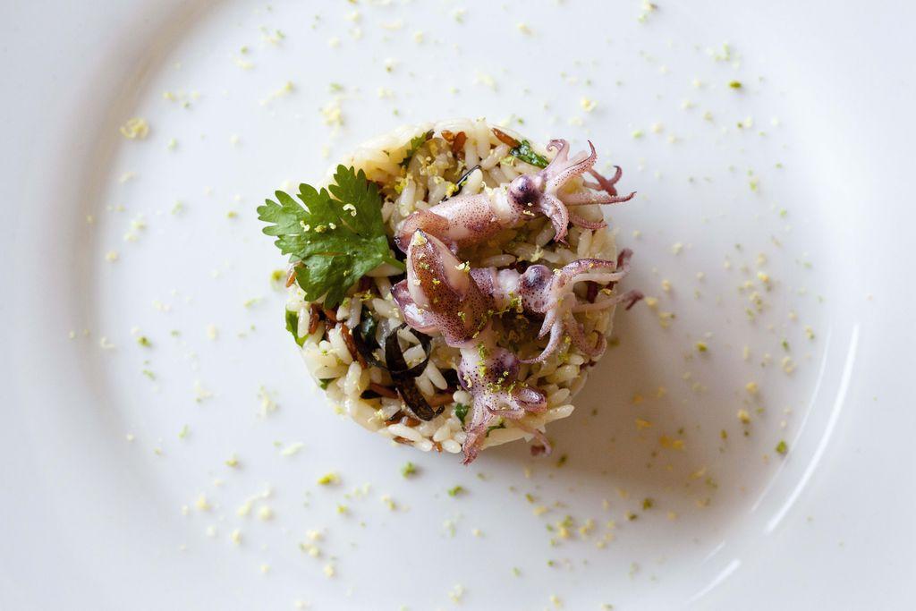 Arroz tricolor con cilantro y puntillas de calamar 5
